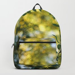 Remembrance. Backpack