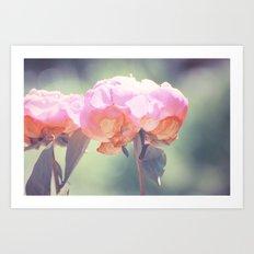 Pink Peony 8 Art Print