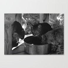 Watering Canvas Print