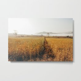 Hiking in Burma Metal Print
