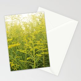 Yellow Goldenrod Stationery Cards