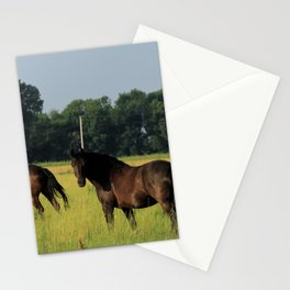 Horses in a green Pasture Stationery Cards