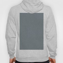 Mid Tone Slate Blue Grey Solid Color Pairs To Valspars 2021 Color of the Year Academy Gray 5001-2A Hoody