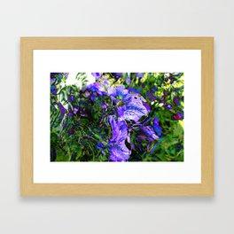 Abstracted Purple Petunias Framed Art Print