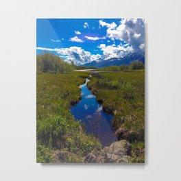 Alaska Reflection by Mandy Ramsey Metal Print