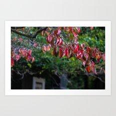 Sad Leaves Art Print