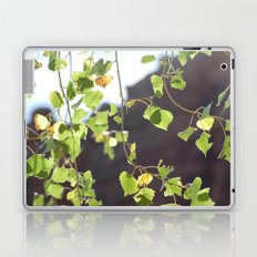 Red Rocks through Leaves Laptop & iPad Skin