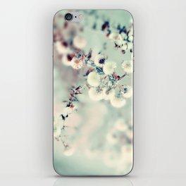 Midwinter Daydream iPhone Skin