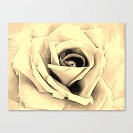 Modern Buttery Yellow Cream Rose Flower Art A266g Canvas Print