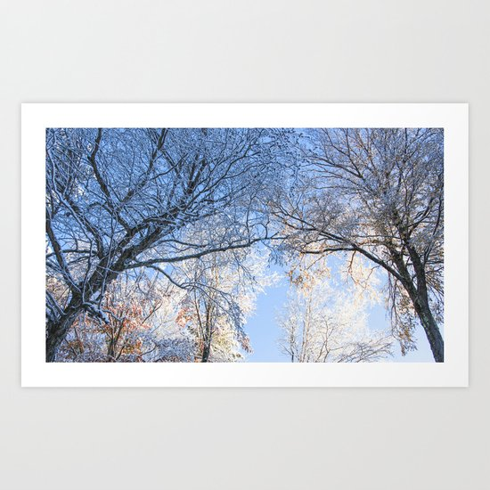 Winter Once Again Art Print