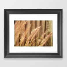 Breezy Framed Art Print