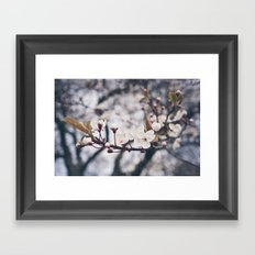 Spring Framed Art Print