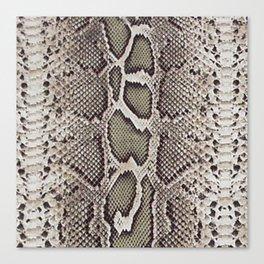 Faux Boa Constrictor Snake Skin Design Canvas Print