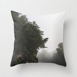 Roadway in Georgia #fog #nature #scene Throw Pillow