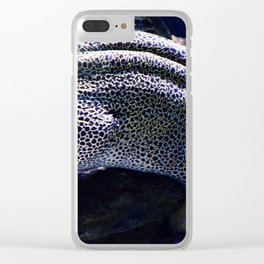 Honeycomb Moray Eel Clear iPhone Case