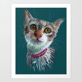 Tofu cat Art Print