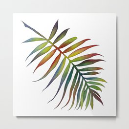 Phoenix Roebelenii Metal Print