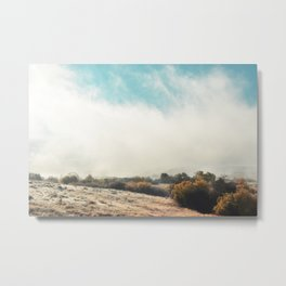Fog in the Willows Metal Print