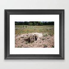 Prairie Dog Framed Art Print