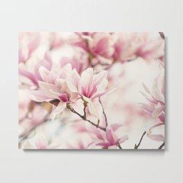 Japanese Magnolia II Metal Print