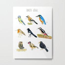 Birds / Vögel Metal Print