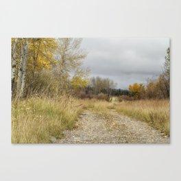 A Walk in Willow Flats - Grand Tetons Canvas Print