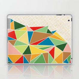Triangle Heap Laptop & iPad Skin