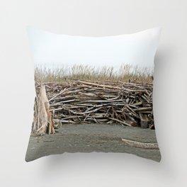 Driftwood Wind Shelter Throw Pillow