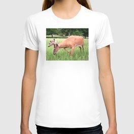 East Park Spring Buck T-shirt