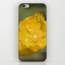 Yellow Poppy iPhone Skin