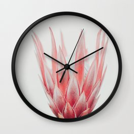 King Protea flower Wall Clock
