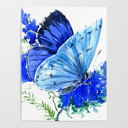 Blue Butterfly, blue butterfly lover blue room design floral nature Poster