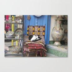 Marrakesh Cats II Canvas Print