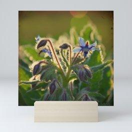 The Beauty of Weeds Mini Art Print