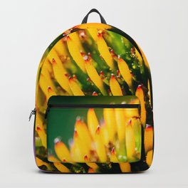 Cone Flower Backpack