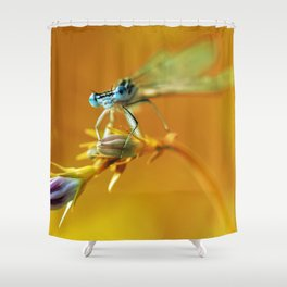 Morning impresion with blue dragonfly Shower Curtain