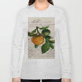 Shabby French botanical print tangerine clementine mandarin orange Long Sleeve T-shirt