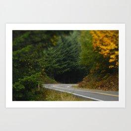 Lonely Road Art Print