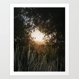 East County Art Print