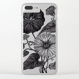 Victorian Botanical Illustration of Convolvulus in Full Bloom Clear iPhone Case