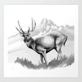 Rusa Deer Art Print