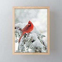 Cardinal on Snowy Branch (sq) Framed Mini Art Print