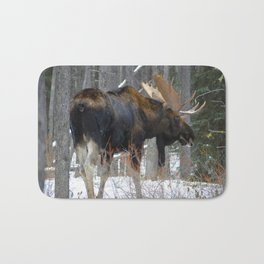 Massive male moose on the loose in Jasper National Park Bath Mat