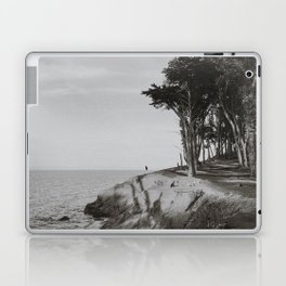 COYOTE POINT VI (B+W) Laptop & iPad Skin