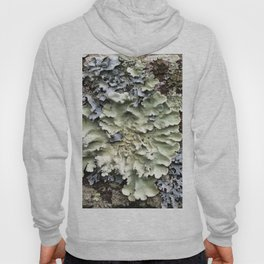 Nature's Fence Flowers Hoody
