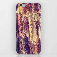 Indian Corn iPhone & iPod Skin