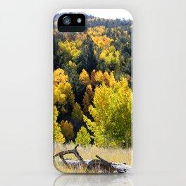 Dome Rock, Divide Colorado iPhone Case