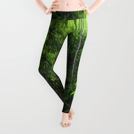 Forest Hill Leggings