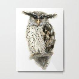 Forest Eagle Owl Metal Print
