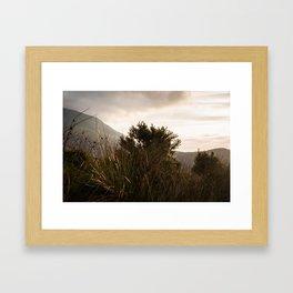 Natural Sepia  Framed Art Print